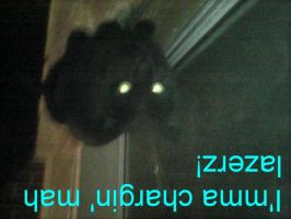 LOLCats Blackie 3 by KHC1000
