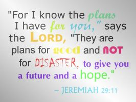 Jeremiah 29:11 - WALLPAPER by plmethvin