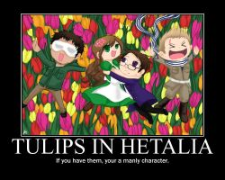 Hetalia manly trio poster by King-Mylaxu