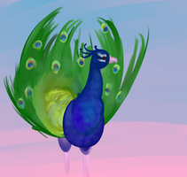 My First Peacock by spazzyArtist1999