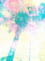 Palm tree by MyCleanHands
