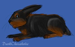 Cottontail realism try REDO by DarkChocaholic