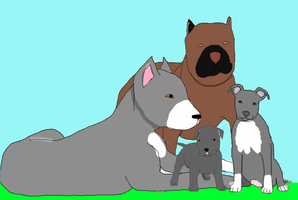 Pitbull family Pic by liongirl2289