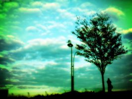 Cloud And The Tree by simzcom