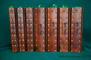 Leather covered Harry Potter set by Photoguy42