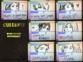 Cullens in my DS lite by vanipy05