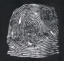Identity series - Fingerprint by Maleijn