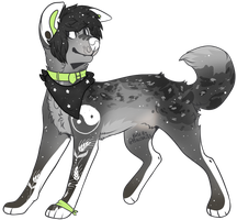 Canine OTA (open) by BeyondDreams-Adopts