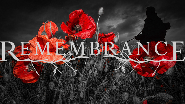 In Remembrance by SERDD