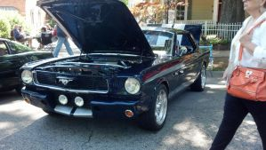 Shelby GT350 by benracer