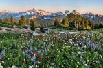 End of the day in Rainier Park by arnaudperret