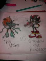who would win the String vs Shadow the Hedgehog by emerswell