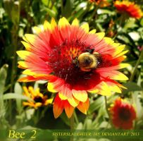 Bee 2 by Sisterslaughter165