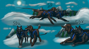 Estello and Jagger sled titles by AuroraIkia