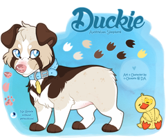 SOLD: Duckie the aussie by c-Chimera