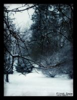 First Snow by candy-cane-killer