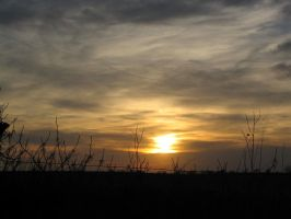 Sunset On The Farm by Emagyne