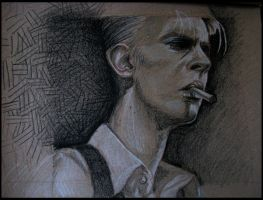 Bowie by Tonks-92