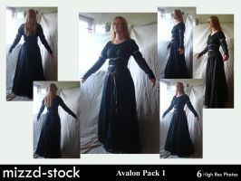 Avalon pack 1 by mizzd-stock