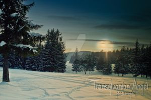 Transylvanian Winter by Transylvanian-Angel