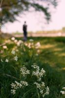 Follow The Trail Of Flowers by MaaykeKlaver