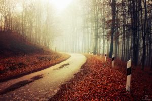 Autumn Journey XXIII. by realityDream