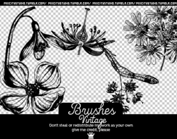 Brushes Vintage by RadioactivColor