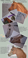 Arabian Tutorial: Markers by JNFerrigno
