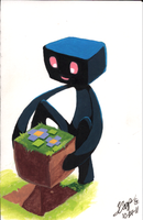 Enderman's block by Yokoshuichi