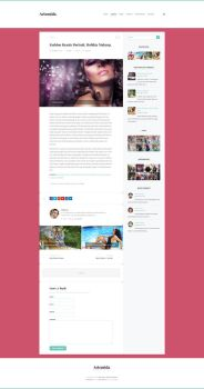 Artemida - Responsive Blog WordPress Theme - Post by ZERGEV