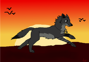 Into the Sunset *comish* by TheRedRos3