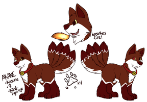 Akane Reference Sheet 2014 by CollectionOfWhiskers