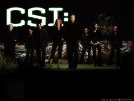 CSI Vegas Group Wallpaper by sugar-noor