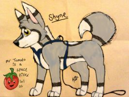 Shyne - character adoption - OPEN by Aura-Adoption-Center