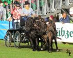 NSD 2014 - Pony Carriage 3 by bumblebee-stocks