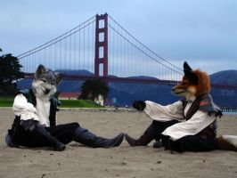 Golden Gate Critters by BlueHyena