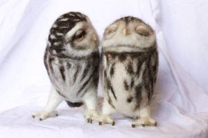 Screetch Owls, a loving pair by Yvonnesworkshop