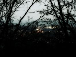 river of lights ( cracow from forest hill ) by snusmumrikenn