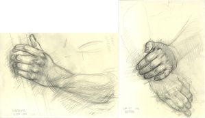 TDA06-11 hand studies by tigr3ss