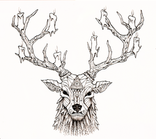 Stag by ross-senpai