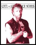 Chuck Norris Fact number 69 by Greiffen