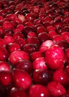 Cranberries by clearblackwater