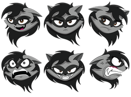 Expressive raccoon by GoneIn10Seconds