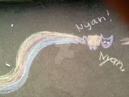 Nyan Cat by Valilolette