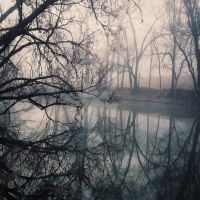 Foggy reflection by Occasionaldoodler