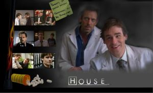 House and Wilson by Hey--Jude