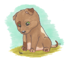 Garden Puppy by Wulvie-leigh