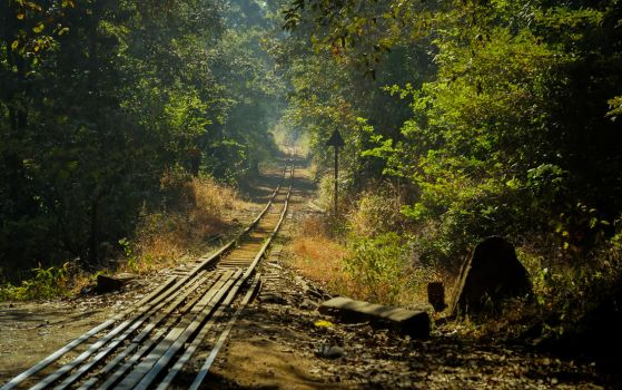 To Nowhere and Everywhere.. by preethi524