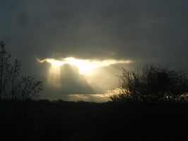 Light play by Bizkit66