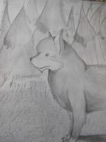 Wolf by AlexE98